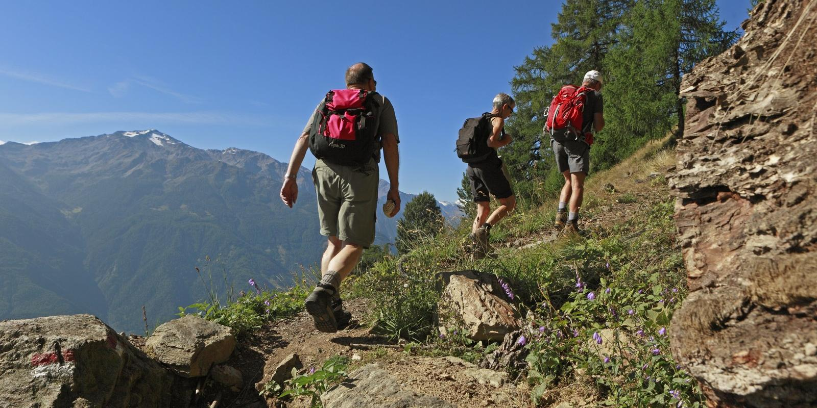 Hiking in the Vinschgau Valley