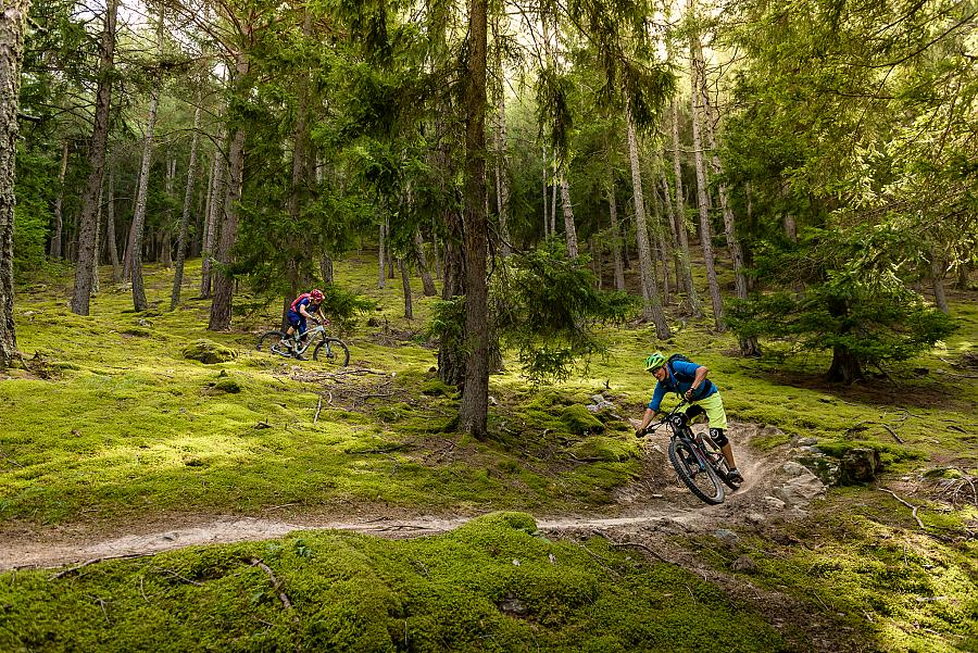 Mountain bike on the trails at the Passo Resia